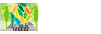 Логотип магазина 101 Чай